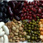 Can Beans Affect Gout?