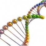 Is Bronchitis Hereditary?