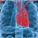 Can Asthma Cause Chest Pain?