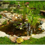 How to Calculate Pond Liner Size