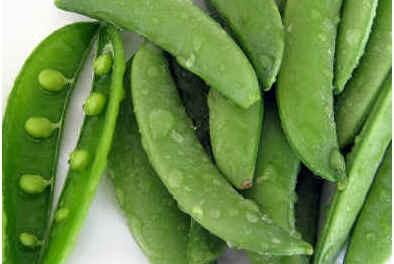 how-to-grow-sugar-snap-peas