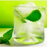 How to Make a Mint Julep with Vodka