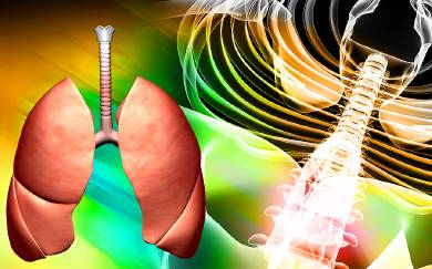 what-body-systems-does-asthma-affect