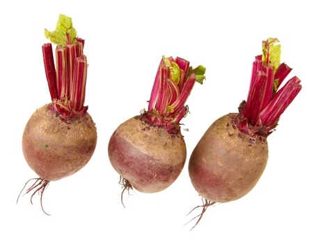 how-to-store-beets