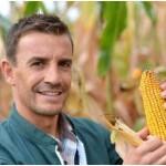 When to Plant Corn?