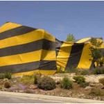 Does Homeowner's Insurance Cover Termite Damage?