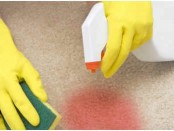 How to clean dried blood out of carpet