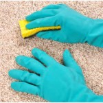 How to Steam Clean Berber Carpet