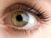 Contributing Factors for Developing Age-Related Macular Degeneration (AMD)