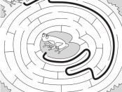 Frog Activities: Easy Frog Maze Solution