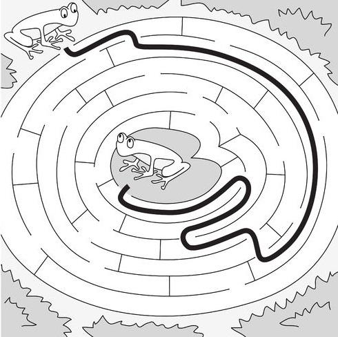 Frog Activities: Easy Frog Maze Solution