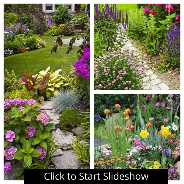 Magical Flower Gardens Photo Slideshow Sophisticated Edge